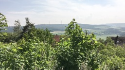 Weitschweifend: Der Blick vom Burgberg