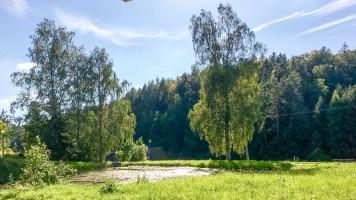 ... Weiher und Wald