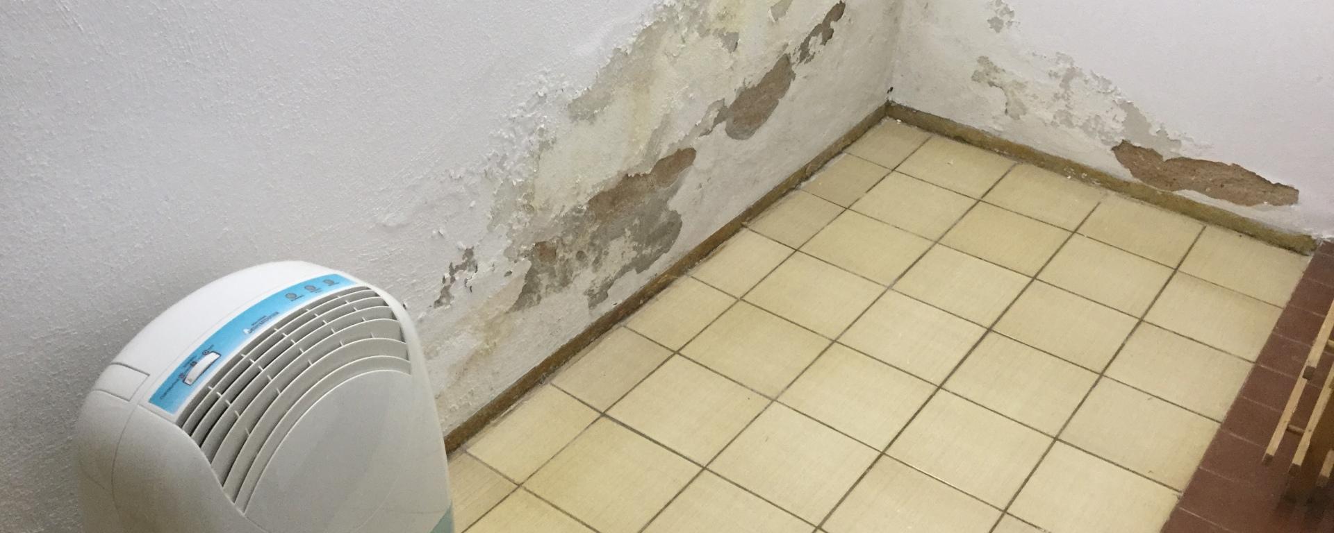 Wieder Wasserschaden im Keller! – Werners WoMoBlog