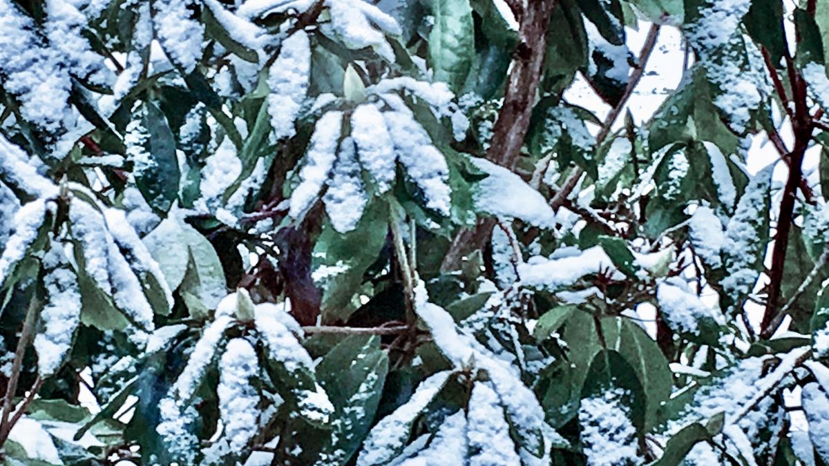 """Nochmal zum Thema """"Frostschutz beim unbewohnten WoMo""""!"""